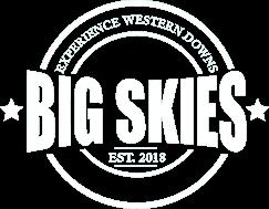 big skies logo
